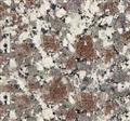 Natural Snow Plum Brown Granite HG37