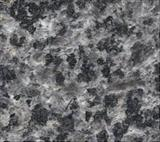 Butterfly Brown Granite