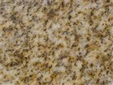 Yellow Granite Dark Yellow