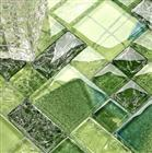 green glass mosaic tiles glass mosaic wall tiles