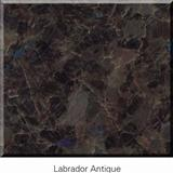 Labrador Antique