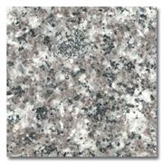 G664 Granite Tile & Slabs