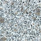 Flower Pearl Granite