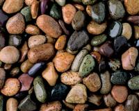White and colored pebbles