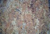 Imported Granite Madura Gold