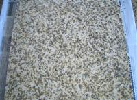 Imported Granite Vietnom Yellow