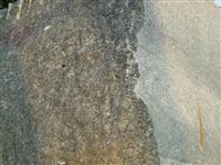 Buttterfly Green, Green Granite, Granite