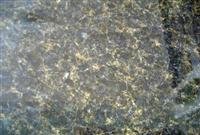 Imported Granite Verde Ubatuba