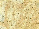 Granite Slab Kashmir Gold