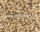 Chinese Granite G703 Mum Yellow for Floor Wall