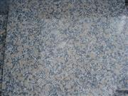 Fugui Gold Granite Slab