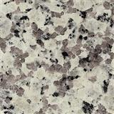 Bianco Lunar Granite tiles