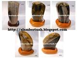 Fossil Wood Stone or Petrified Wood