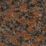 Sell Granite 562 - maple red4.SurfaceSawn/Flamed/Tumbled/Hammered/Natural/Pineapple/Antiqued/Polishe