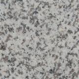 Big Flower White Granite