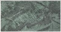 Vineyard Green Soapstone -Natural Surface