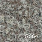 G664(Misty Brown)