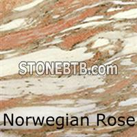 Norwegain Rose