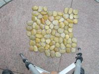 Yellow Serrated Pebbles