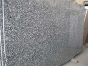 White Oyster Granite Slab