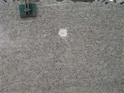 Giallo Santa Cecilia Granite Slab