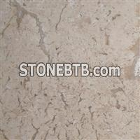 Fossil Travertine Light