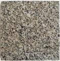 Expo Grey Granite