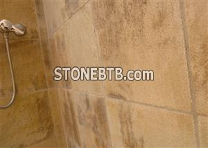 Indian Fossil Sandstone