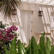 Dominican coral stone wall cladding