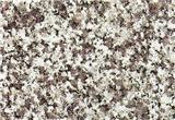 Granite Slab Flooring