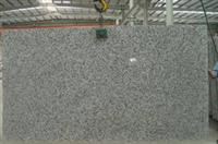 Gray cut slab