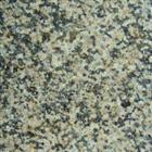 Chrysanthemum Yellow Granite