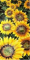 Sunflower Mosaic Artic Drawing