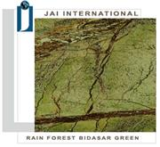 Rainforest- Bidasar Green Marble