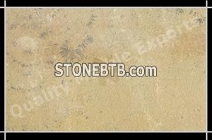 Mint Fossil Natural 01