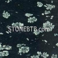 Granite Tile; Granite Slab; Black Peony