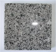 Grey polished granite tile