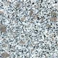 Peral Flower/Granite Tile & Slab