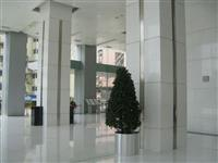 White Marble Hall-2