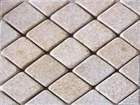Paver with Mesh