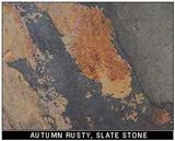Autumn Rusty