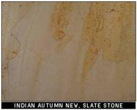 Indian Autumn New