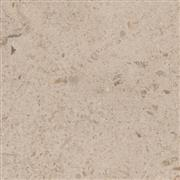 Gascogne Beige Filled & Honed Limestone