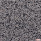 G603 Light Grey Granite