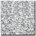 Chinese Granite Tile and Slab