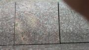 G664 natural stone,china granite ,polished slab