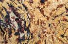 Fantasy Gold granite slabs