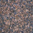Amazon Blue (coral blue) granite