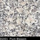 Plum Blossom Granite Tile