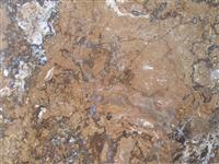 Walnut Travertine Stone